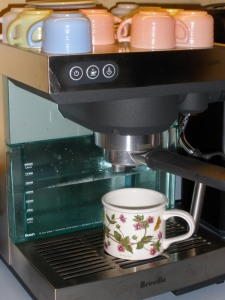 count me a fan of the Breville Ikon